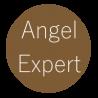 Angel Expert